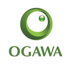 Sales Indoor Careers at Ogawa Egypt